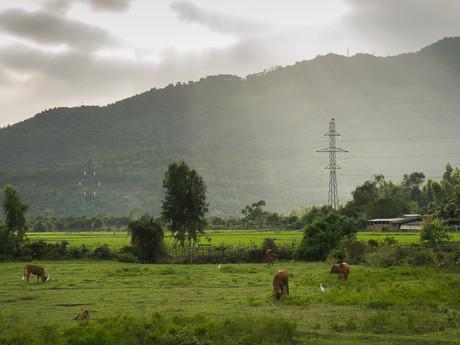 природа в Дананге