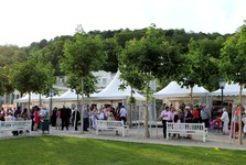 Wine in the Park event – (c) Lower Austria