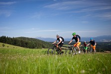 Gutenstein Alps from bike – (c) Lower Austria