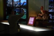 Природоведческий музей