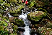 Steiermark - (c) steiermark tourismus