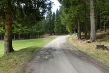 по умеренно поднимающейся лесной дорожке вы приедете к деревянному месту отдыха