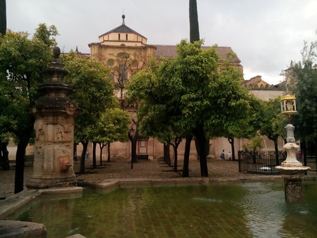кафедральный собор Мескита, вид из парка в окружении апельсиновых деревьев