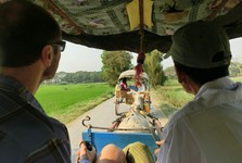 the view from inside a horse riksha