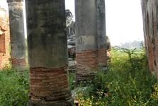 zbytky starobylých staveb ve vysoké trávě