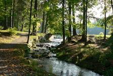 zámecký park ve Světlé nad Sázavou (foto: Stanislav Bárta)