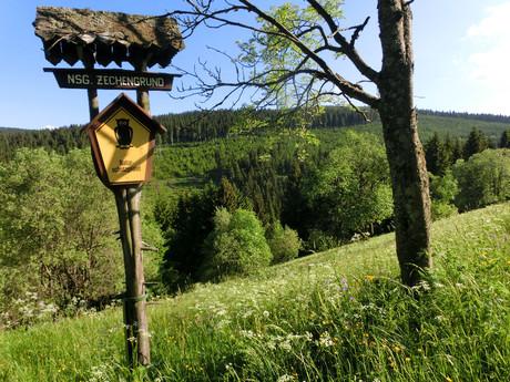 národní park za Oberwiesenthalem
