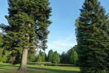 Врхлаби, парк замка