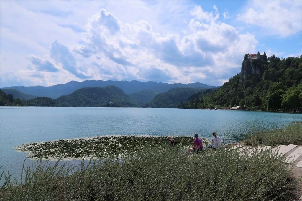 Bled (jezero)