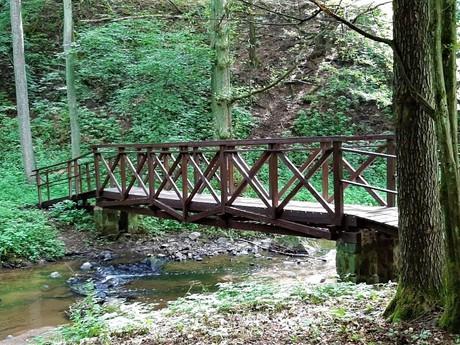 lesné cestičky v okolí potoka Mnichovka