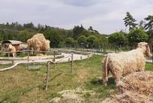 Farmapark Soběhrdy