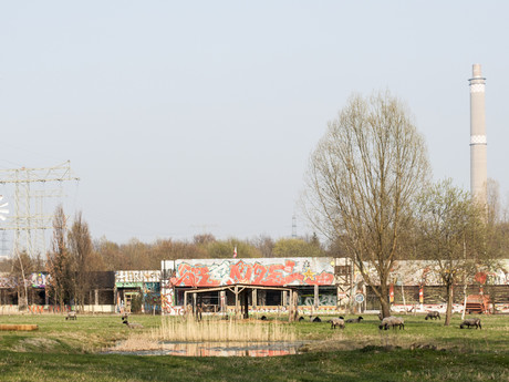 Landschaftspark Herzberge