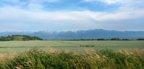 Romanian Carpthian mountains
