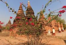 pagody jsou staré až 250 let