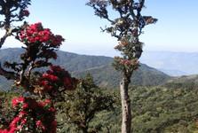 výhled až na indické hory