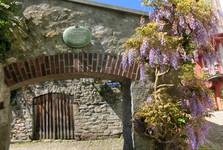 цветочные шторы над воротами