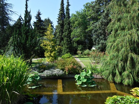 The botanical garden at Comenius University, Bratislava