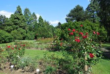 Ботанический сад Университета им. Коменского в Братиславе