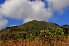 zalesněná hora Uchumachi, 2 500 m n. m.