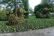 when Mainau's gardeners have some idea they make it reality