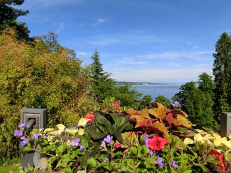 the vista over Bodam Lake