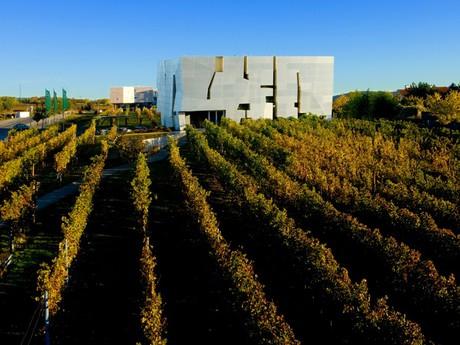 Виноградная осень - Нижняя Австрия