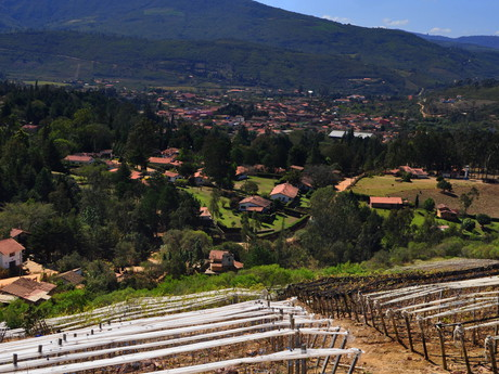 na vinici 1750 a pohled na Samaipatu