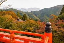 výhľad z chrámu Kurama-dera