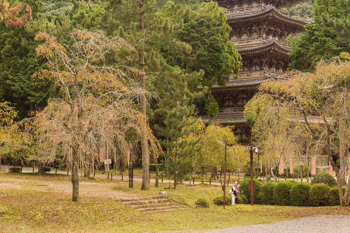 Japan: Daigo-ji – Forgotten UNESCO Shrine Near Kyoto – VIDEO (en ...