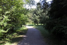 Arboretum Mlyňany