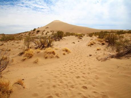 поющая песочная дюна
