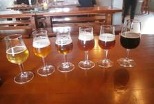 ochutnávky místního piva