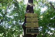 turistická trasa k Hranické propasti (směrovníky)