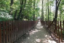 turistická trasa k Hranické propasti