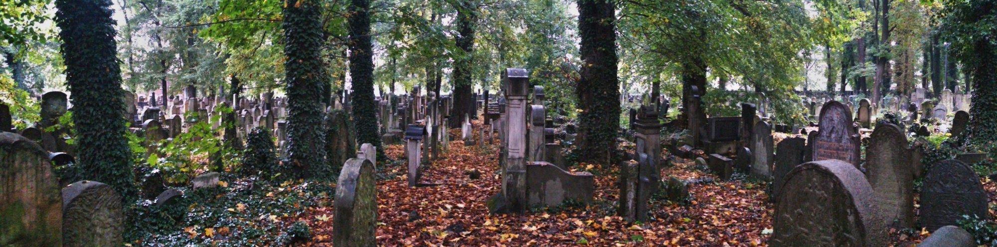 Nový židovský hřbitov