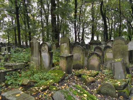 on the New Jewish Cemetery