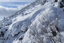 fotosúťaž - nezbedná zima