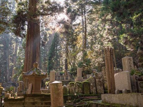 lesný cintorín