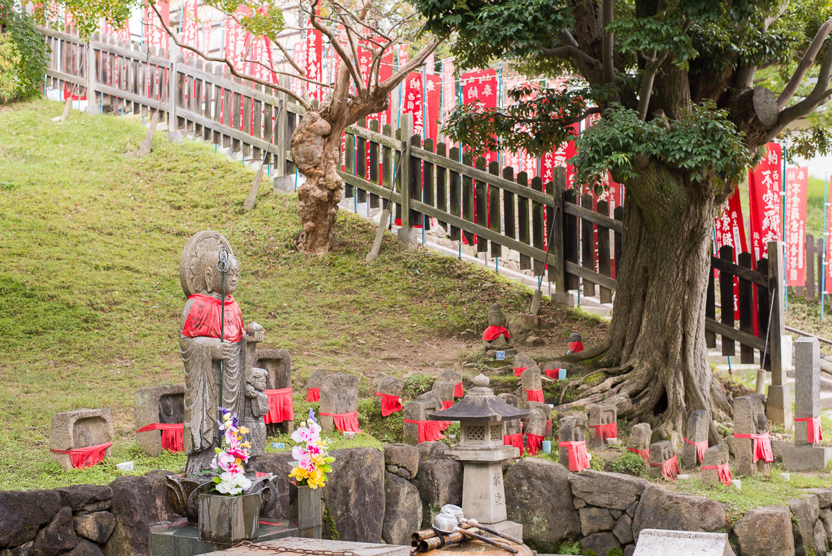 Japan: Nara – The Deer City – VIDEO (en.infoglobe.cz)