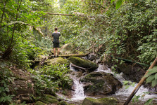 Национальный парк Дой Пха Хом Пок