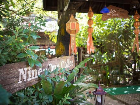 kávová farma Nine One Coffee