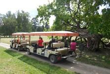 Podzámecká garden - tourist train