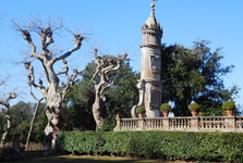 v zahradách Villa Aldobrandini