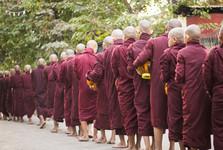 утренняя процессия буддийских монахов