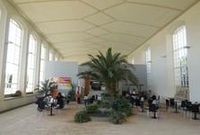 skleníky (interiér)