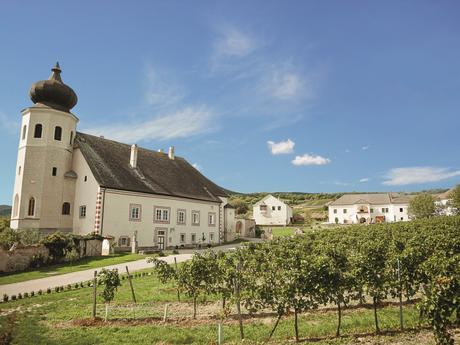 Wienerwald, (c) Roman Seidl