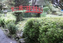 Irish National Stables– Japanese Gardens