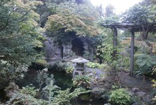 Írsky národný žrebčín – japonské záhrady