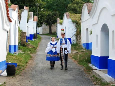 tradiční vinné sklepy Petrov-Plže