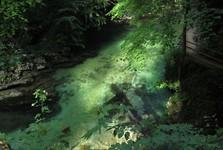 průzračná voda soutěsky Vintgar